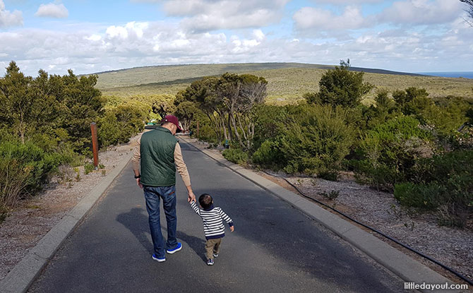 Cape Naturaliste Nature Reserve - Margaret River with Kids