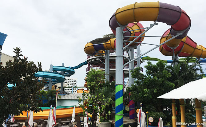 Part of the 158 metre-long Pororo's Funnel (the yellow, purple and red slide). You can also catch a glimpse of Eddy's Adventure (blue slide on the left) here.