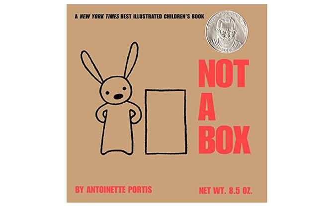 Not a Box by Antoinette Portis