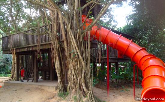 e05-treehouse