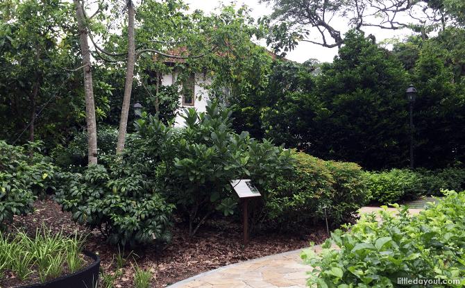 Colonial Bungalows at Singapore Botanic Gardens