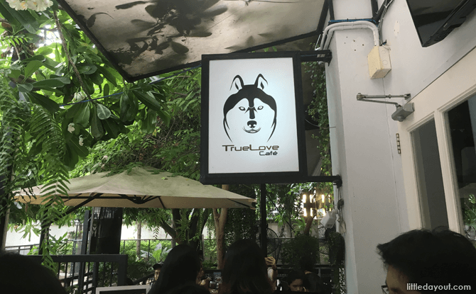 Ticketing area at Husky Cafe, Bangkok