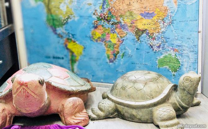 Tortoise Memorabilia
