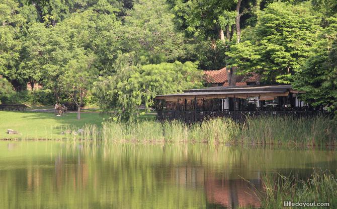 Lake at Punggol Park