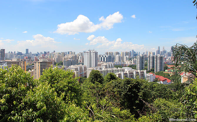 Singapore Cityscape from Mount Faber Park