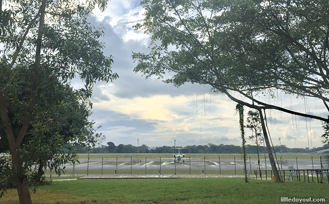 Boardwalk near the Seletar Airport runway