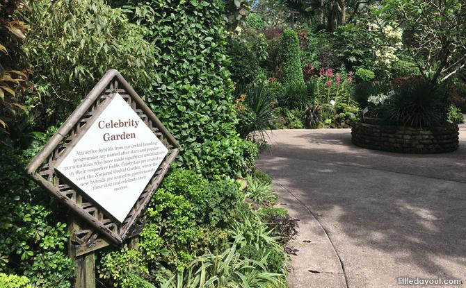 Celebrity Garden