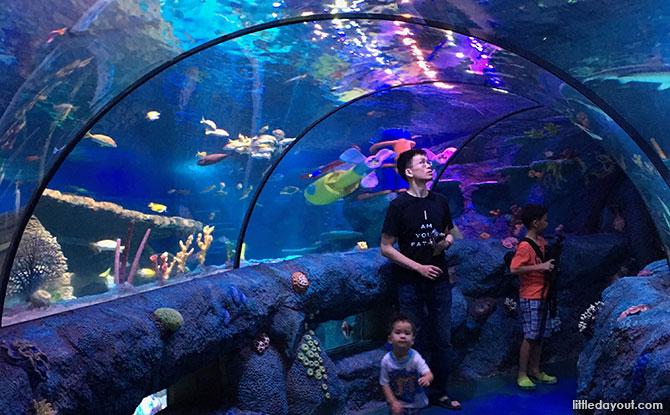 Ocean Tunnel at Sea Life Aquarium, Malaysia, Johor