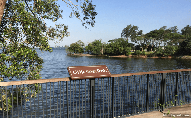 Little Heron Point