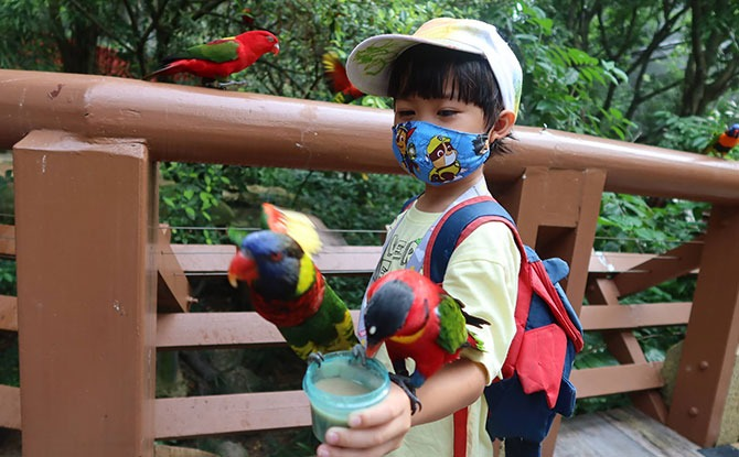 Visiting the Jurong Bird Park