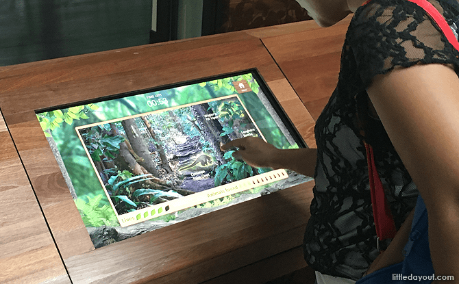 Touch Screens at Bukit Timah Nature Reserve Visitor Centre Gallery