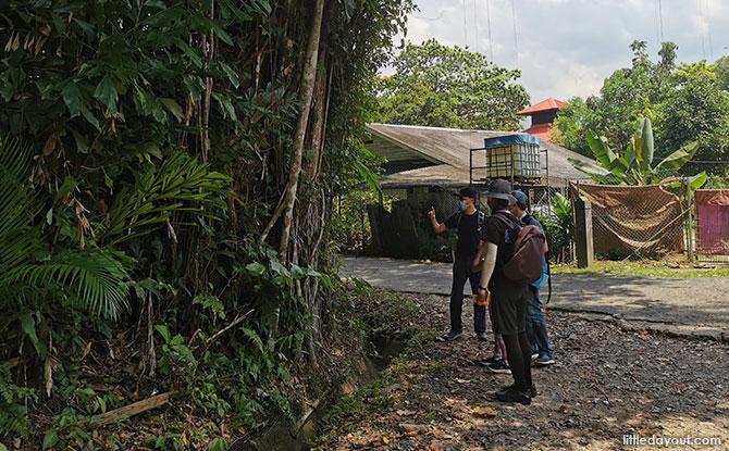 Exploring Lesser-Known Sights on Pulau Ubin