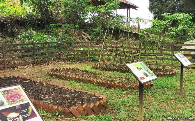 Plots of gardening