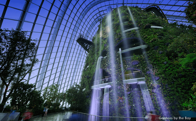 Cloud Forest, Gardens by the Bay