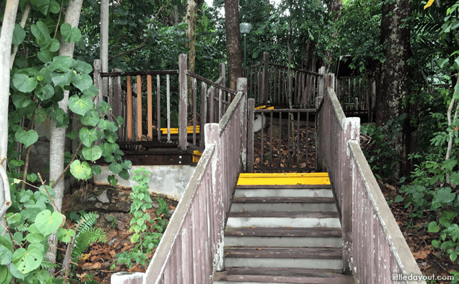 Stairs leading Cliff Walk along the Changi Boardwalk