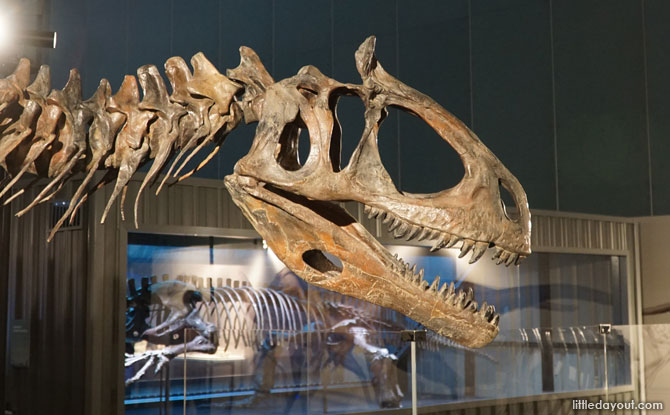 DinoQuest at Science Centre Singapore: Embark On A Search For Dinosaurs