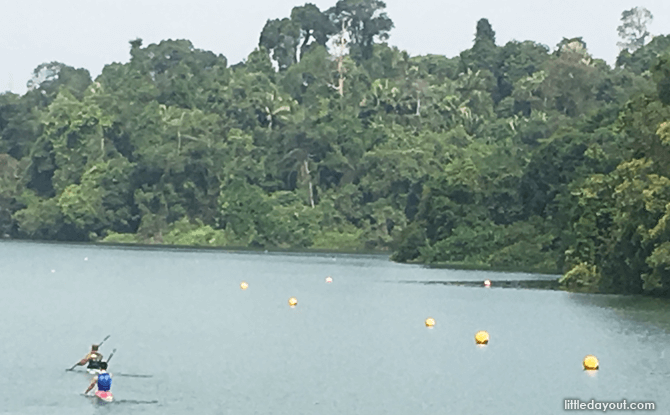 Kayaking at MacRitchie Reservoir