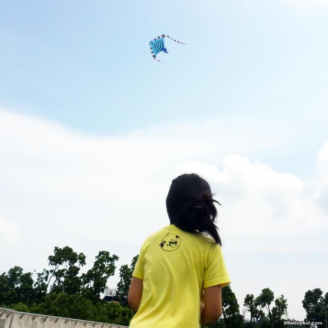 Kite Marina Barrage