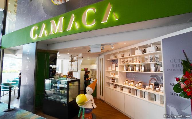 e11 CAMACA