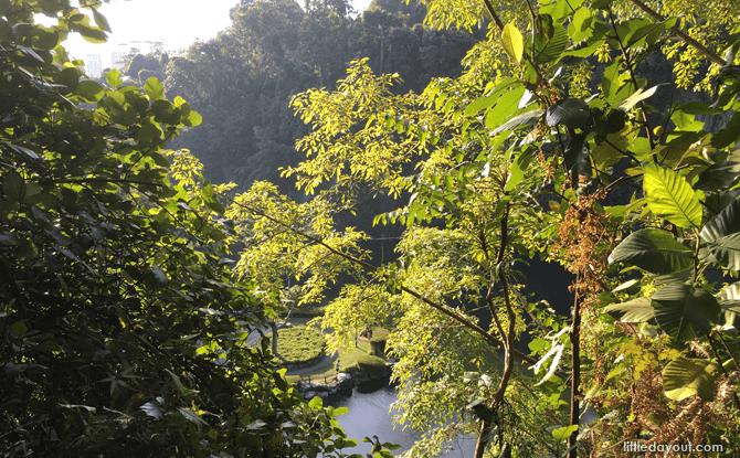 Nature Keeper Camp – 14 June 2017