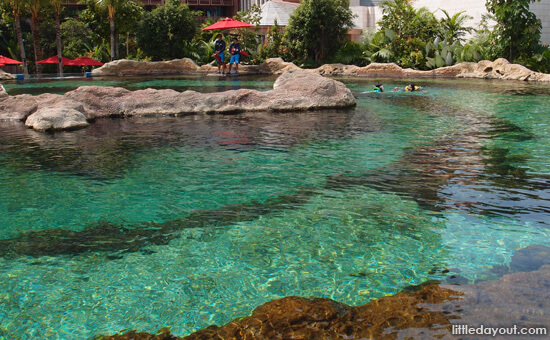 Rainbow Reef at Adventure Cove, Water Park in Singapore