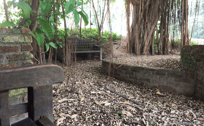 Shaded Seating Area, Hidden Spots within Singapore Botanic Gardens