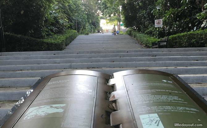 Bukit Batok Nature Park stairs