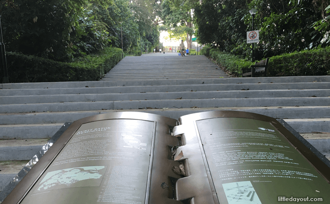 Bukit Batok Nature Park stairs