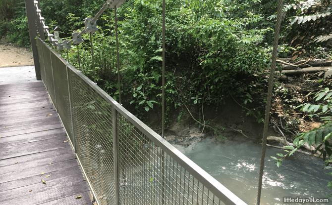Nature Trail, Chestnut Nature Park