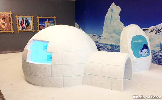 Conservation Igloo