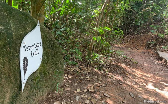 Terentang Trail