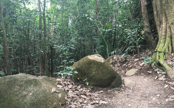 Southern Trail