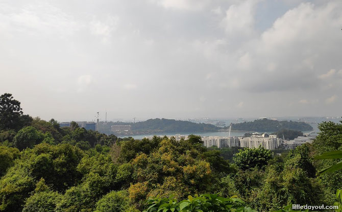 Views from Mount Faber