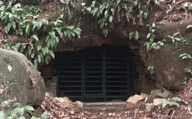 Caves at Bukit Timah Hill
