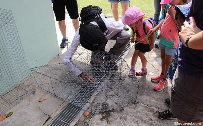 Pulau Ubin Chinese Kampong House: Fish Trap