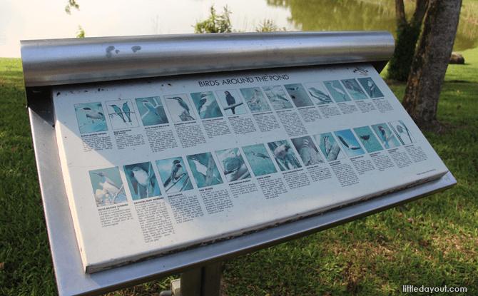 Birds signboard