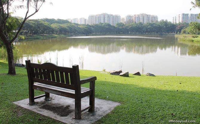 Bench facing the pond at Punggol Park