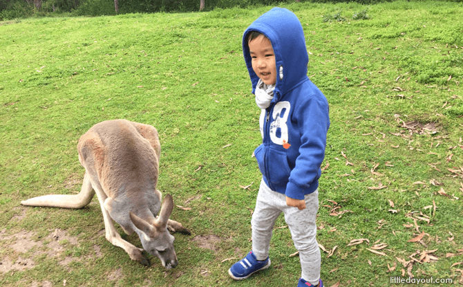 Melbourne with kids