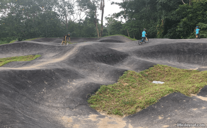 Pump Track at Chestnut Nature Park