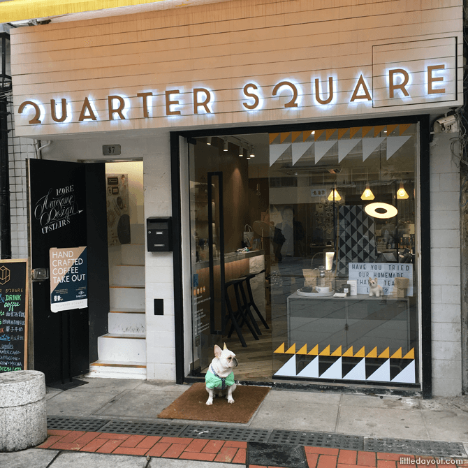 Gallery-coffee bar Quarter Square's real life mascot surveying the public square, like the boss that he is.