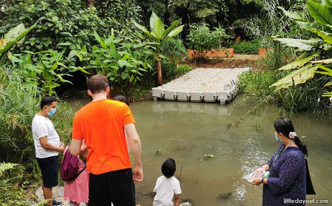 Stream at Jacob Ballas Children's Garden