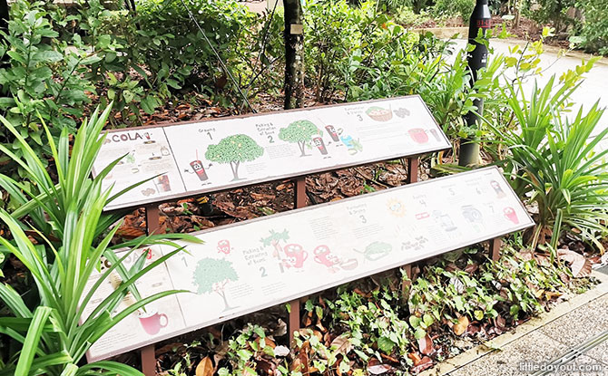 Fruit Trees signs