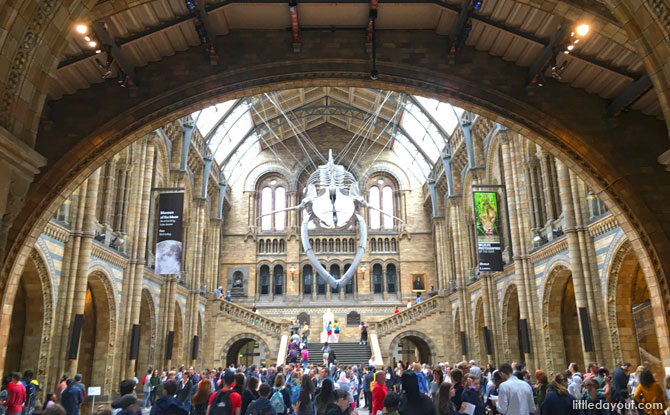 Natural History Museum, London Family Trip