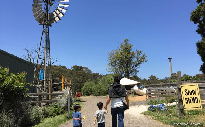 Melbourne Collingwood Children's Farm