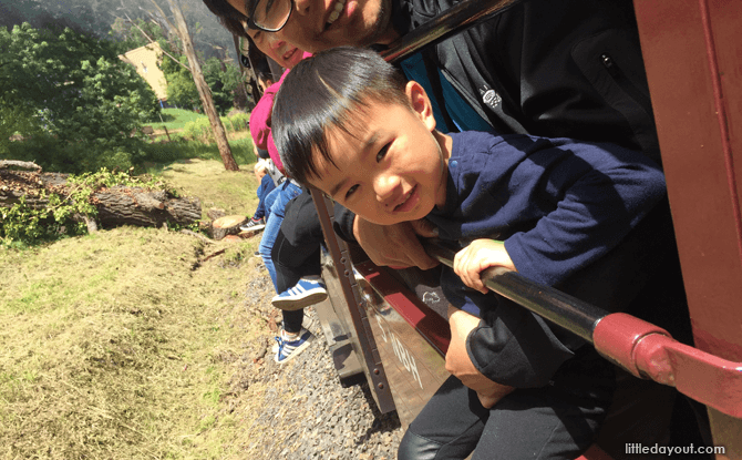 Melbourne Puffing Billy train - Enjoying Melbourne with kids