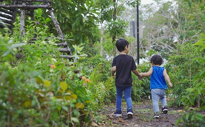 NParks Announces Plans For New 15 km Nature Trail Along East Coast Park