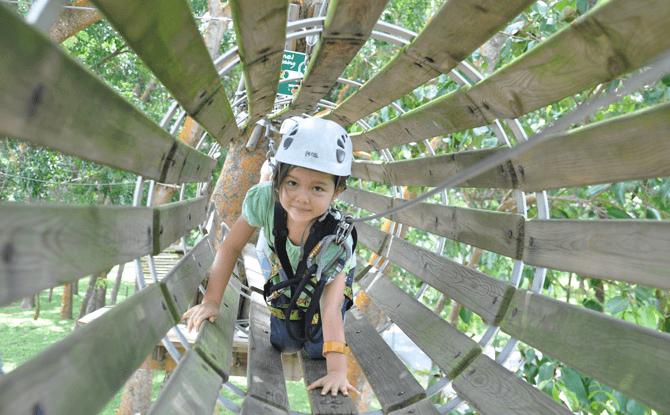 Forest Adventure kids