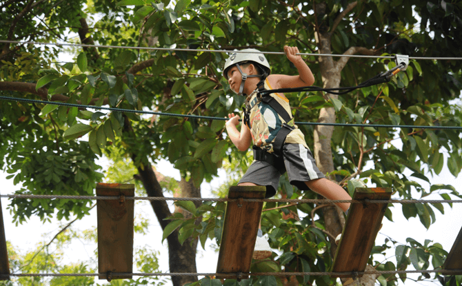 Forest Adventure PSLE Students Special