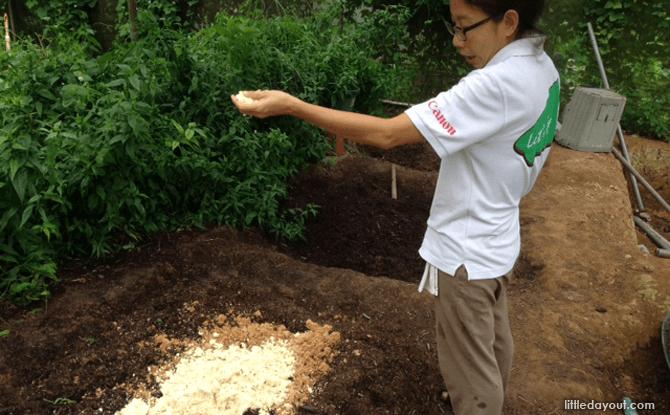 Soy Fertilizer