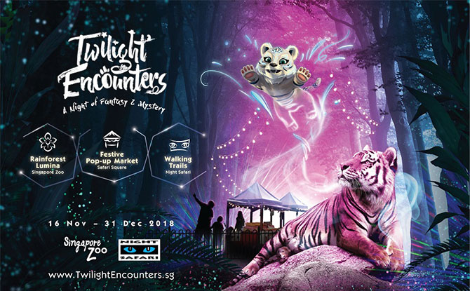 Twilight Encounters 2018 - Night Safari - Things to do with kids during the Nov and Dec school holidays 2018